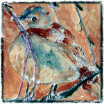 Bird in a Wire Thumbnail bird © twyatt 2015