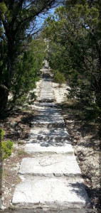 Stairs to Mount Baldy 2014 Vertical